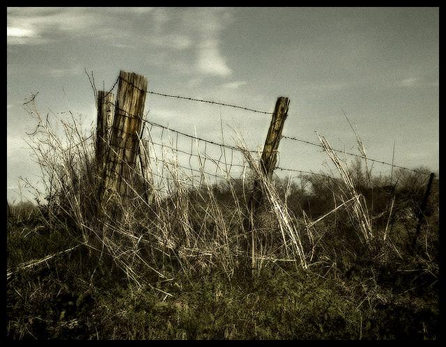 DSCF0118country-fence.jpg