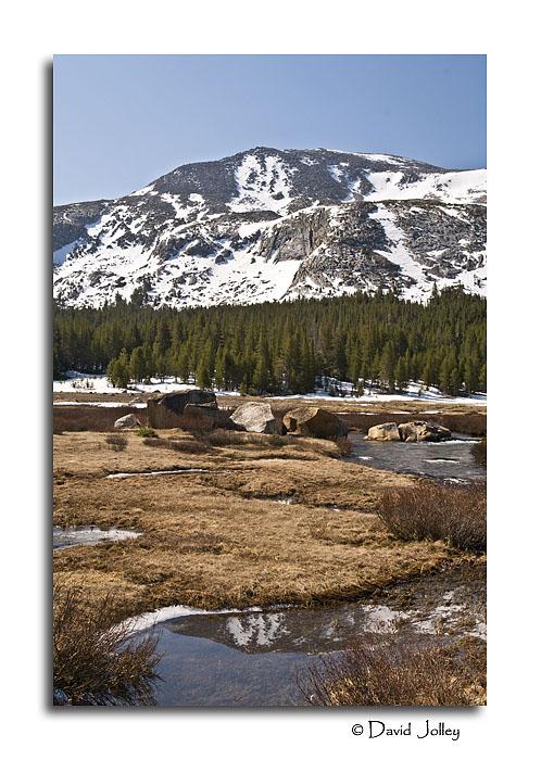 Mammoth Peak from Dana Meadow