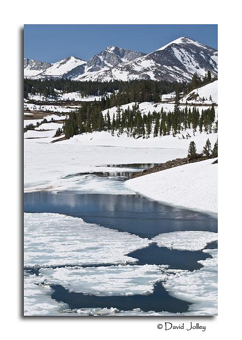 Ellery Lake View