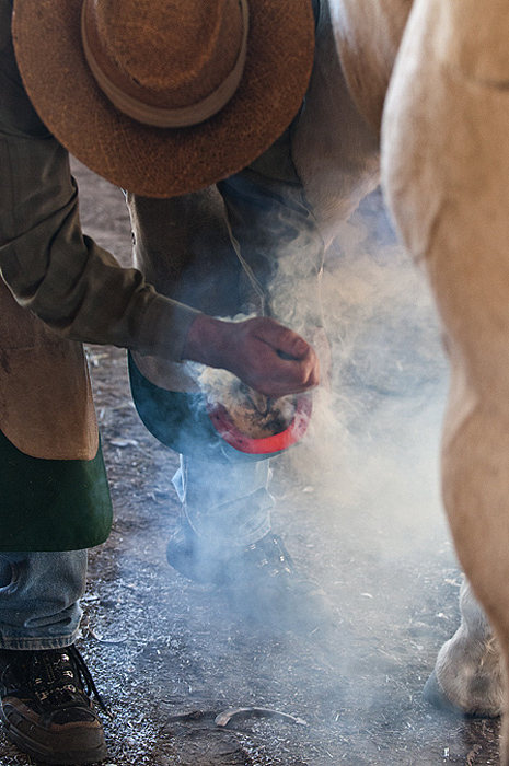 Hot Shoeing 2