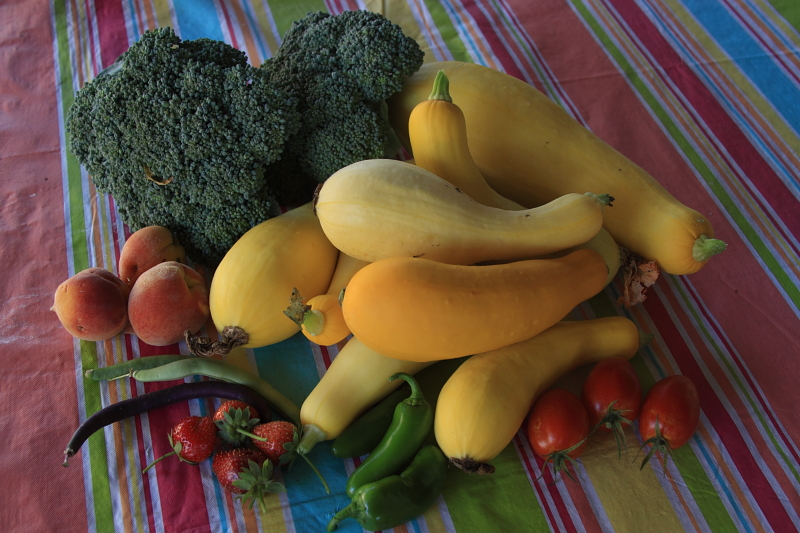 May 3rd Harvest