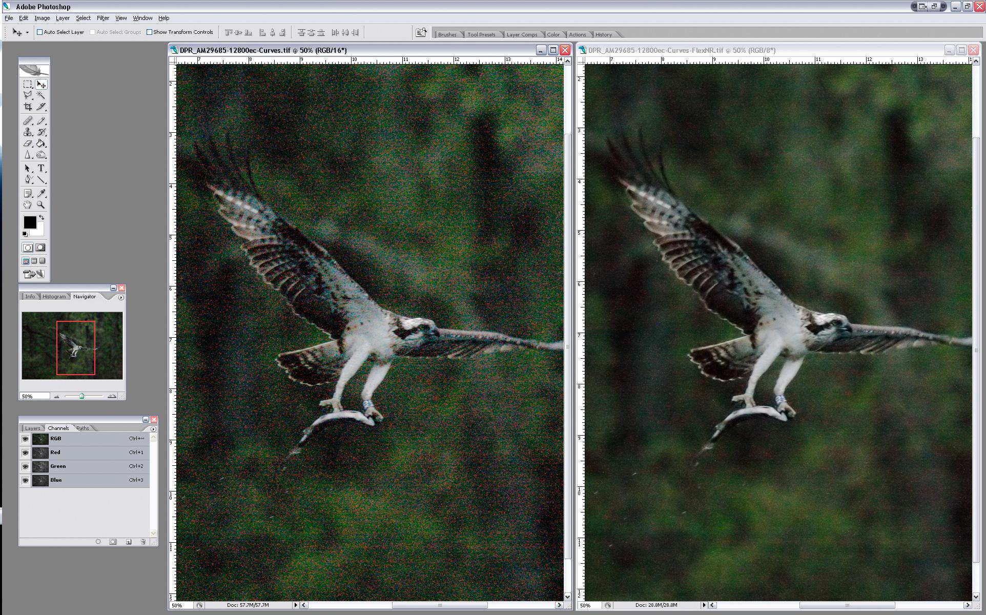 SCREEN_SHOT1D3-OSPREY-ISO12800+_FlexNR-2.jpg