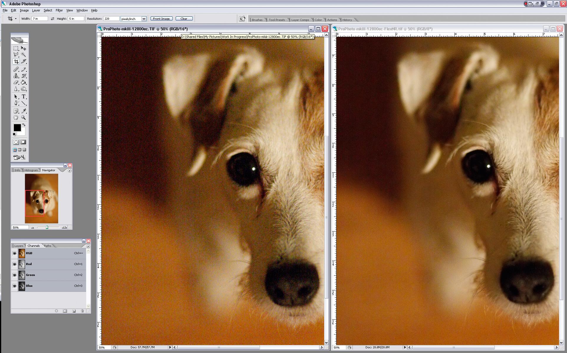 ScreenShot1D3-RIT-ISo12800-FlexNR-2.jpg