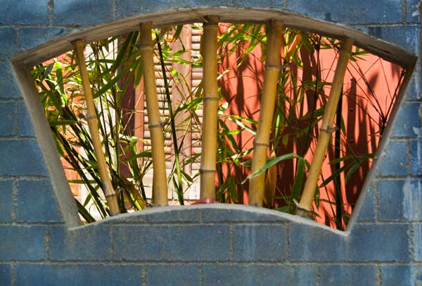 See Thru Series: Bamboo Bars