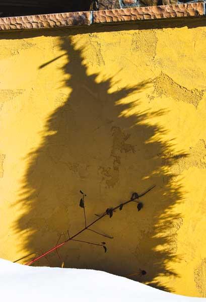 Shadow Fright