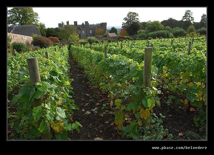 Croft Castle Walled Gardens #26