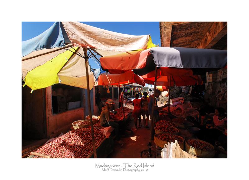 Madagascar - The Red Island 103