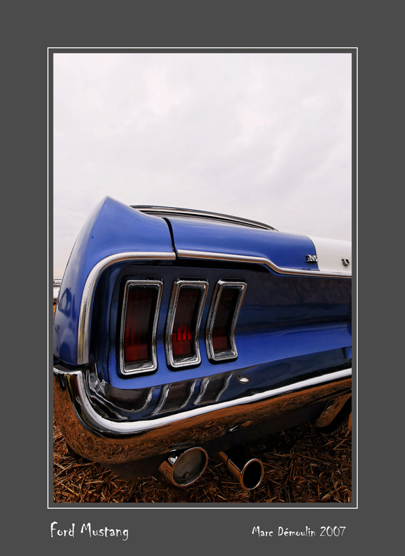FORD Mustang Reims - France