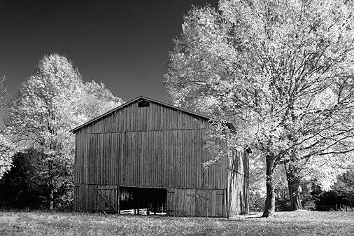 Autumn Tobacco Barn 24795 (faux IR)