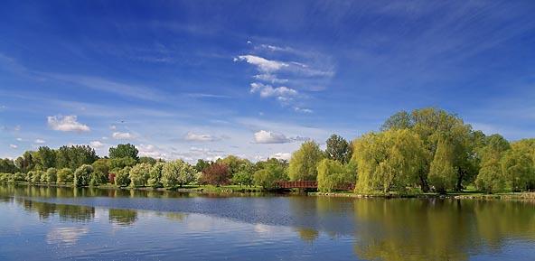 Canal & Arboretum 13134