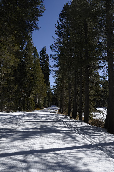 Hiking in the snow on Glacier Point Road