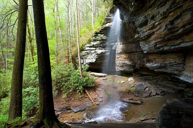 Moore Cove Falls 9