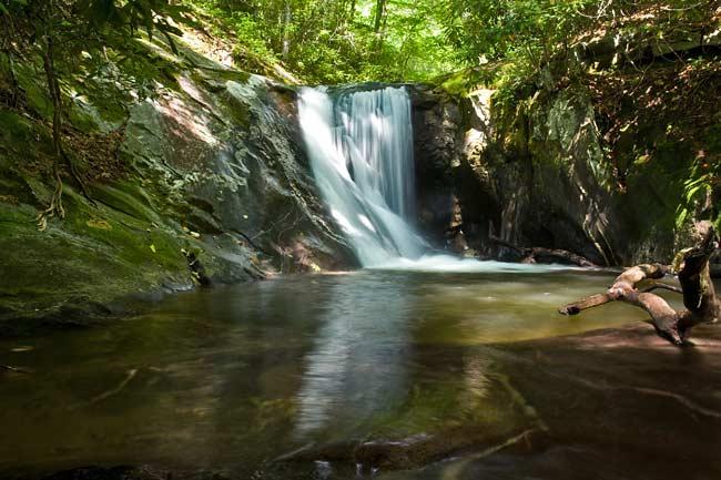 Bearwallow Creek - Nantahala NF 10