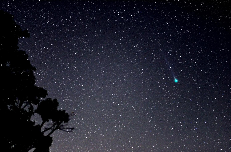 Comet Lemmon widefield