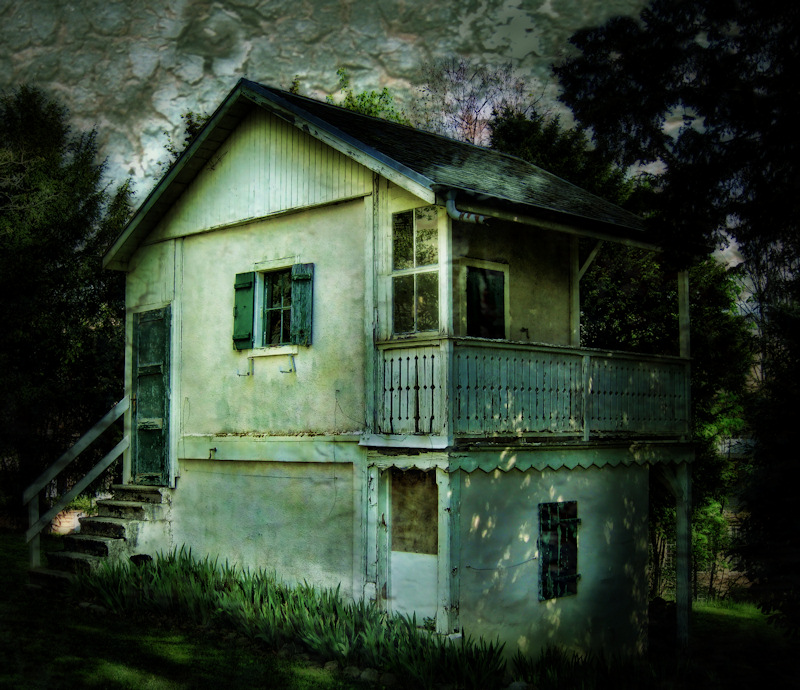 The little house in the forest