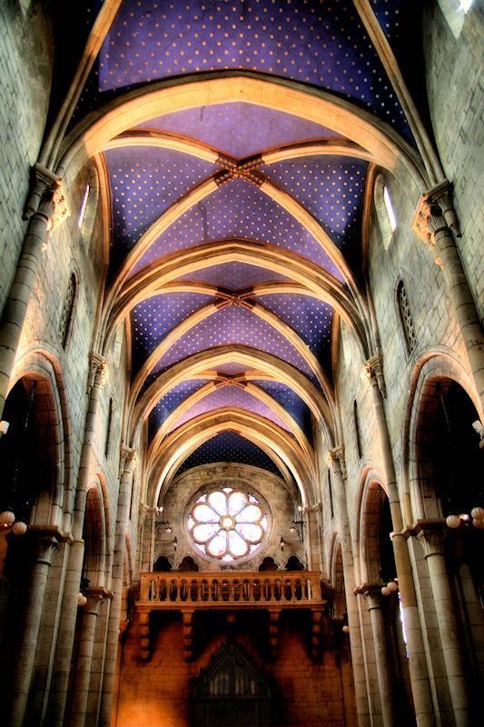 Swiss Gothic 8