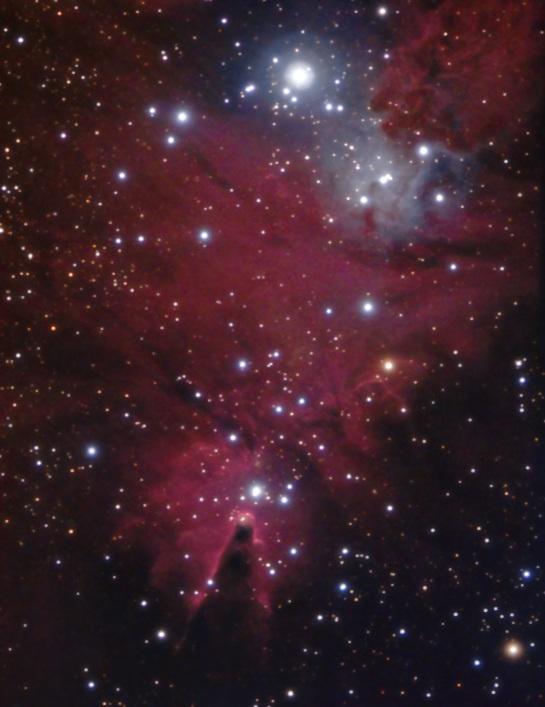 NGC 2264 (Sh2-273)
