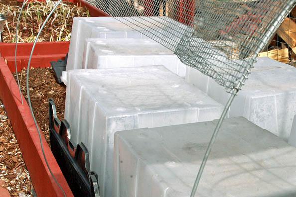 Mini Greenhouse Experiment