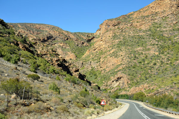 Route 62 between Ladismith and Calitzdorp