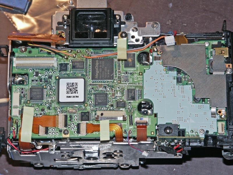 Back Removed 5D 008.jpg