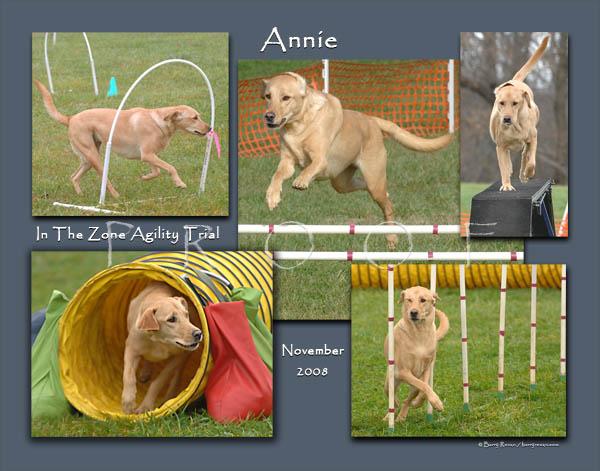 Frank 11x14 Annie