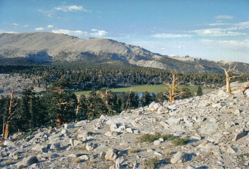 Cirque Valley, Southern Sierra
