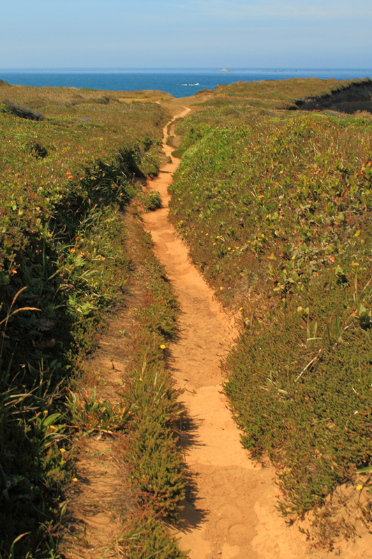 Trail to Otter Point