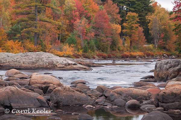 Along the Moose River
