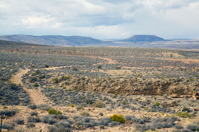 A Winding Dirt Road In Arizona