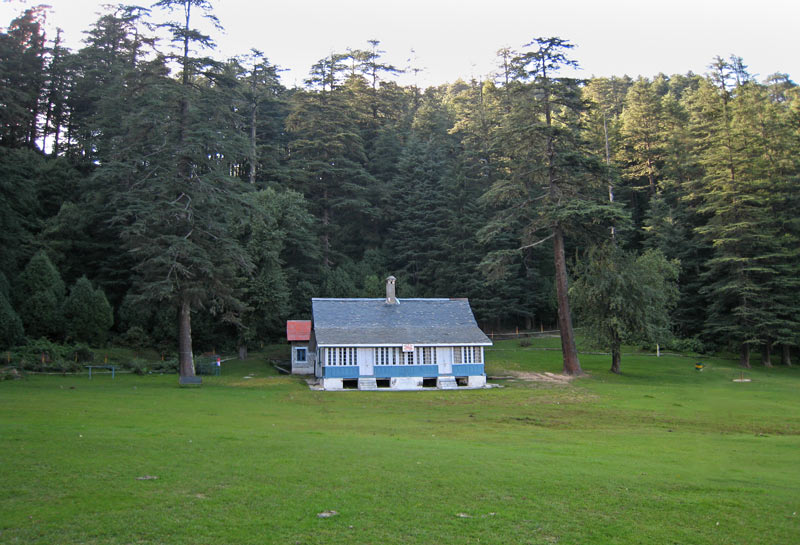 Forest Rest House