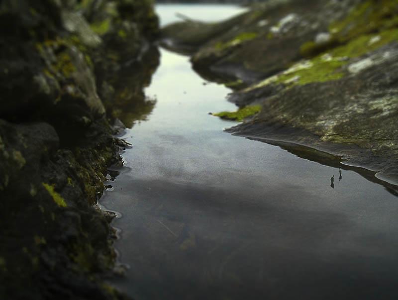 1177. Loch Rochpuil