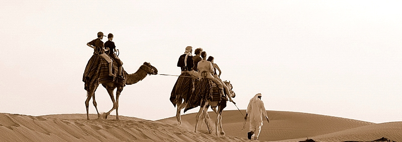 Crossing the desert on camels.