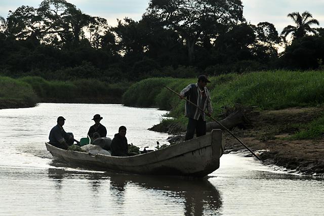 Chimani canoe coming ashore on the river near San Lorenzo de Moxos