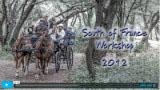 Art Escapes Workshop: South of France 2012