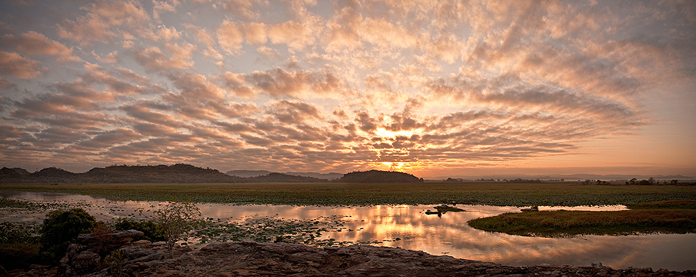 Hawk Dreaming Sunrise Cloudscape Panorama