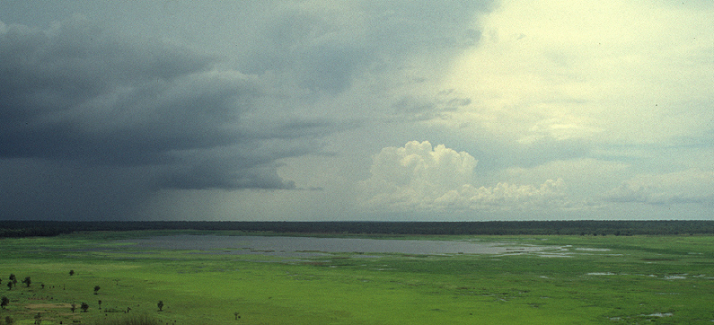 A thunderstorm in Kakadu