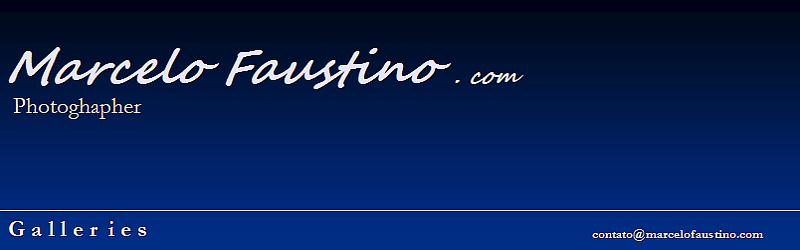 Site's Marcelo Faustino