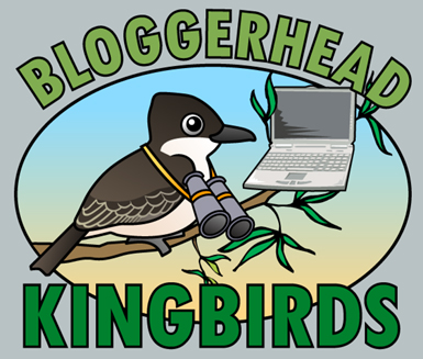 Bloggerhead Kingbirds logo