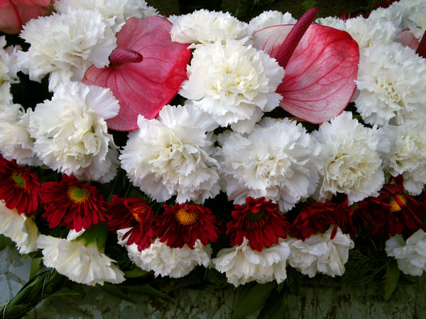 Flowers For Dead