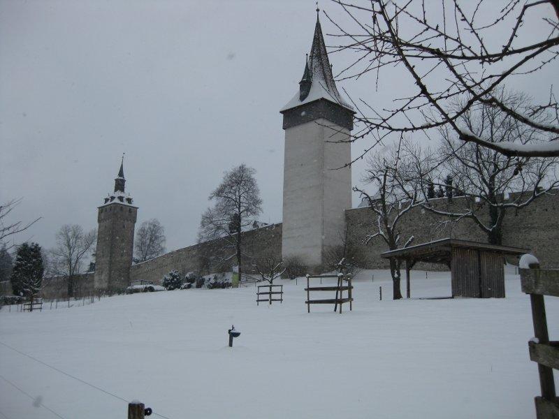 Muralla y Torre de vigilancia