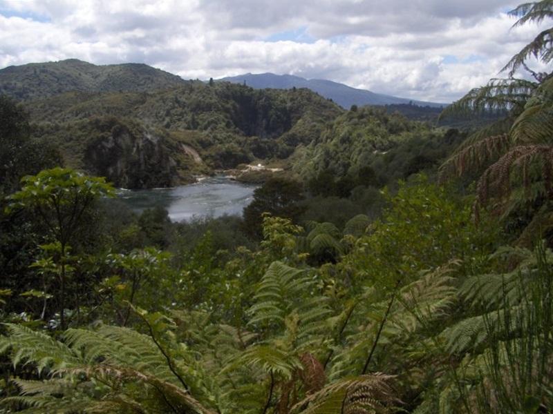 Waimangu