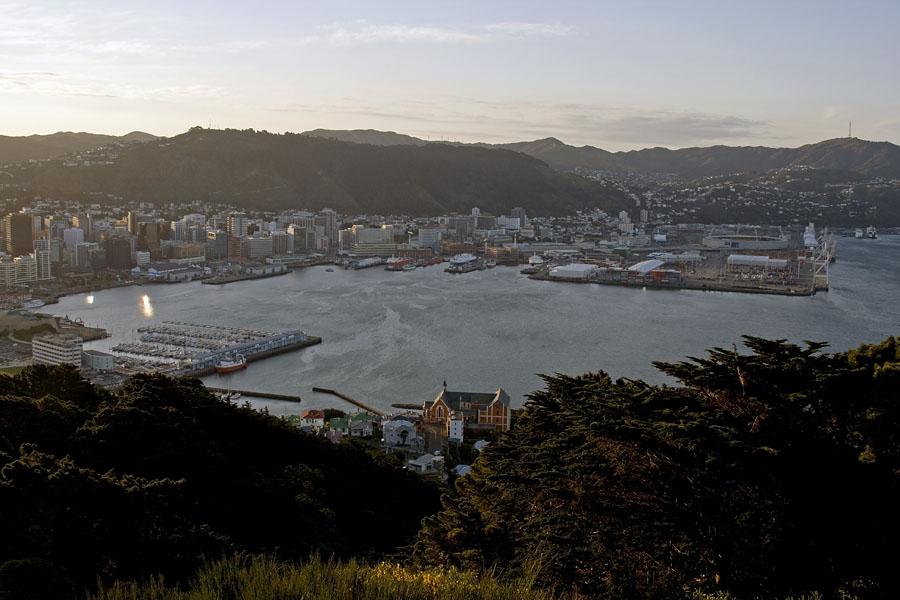 Wellington from Mount Victoria