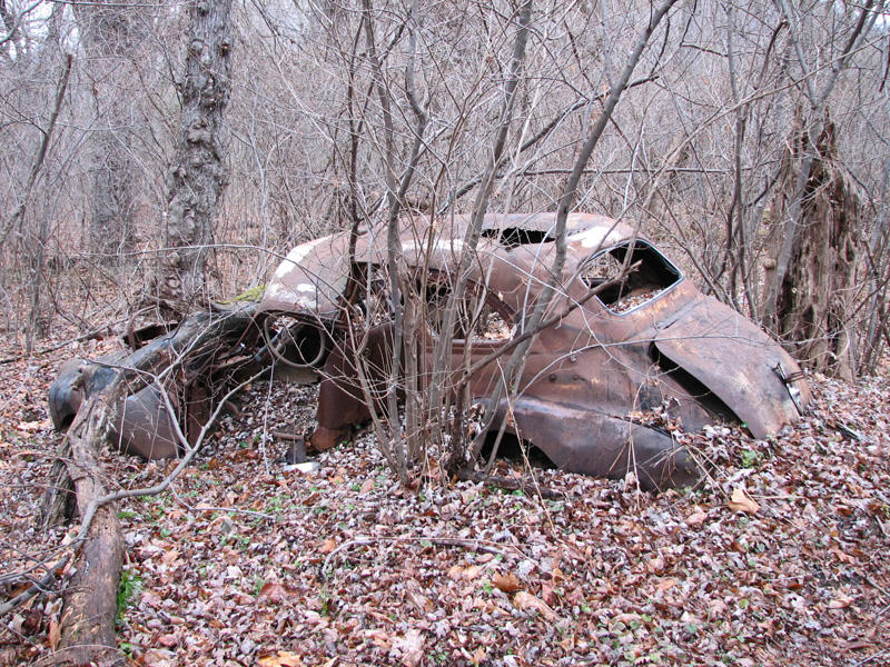 Trash from the 1950s or 1960s in the woods - Its a crying shame!