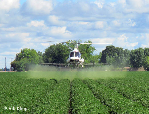 Spraying the Crops,  2
