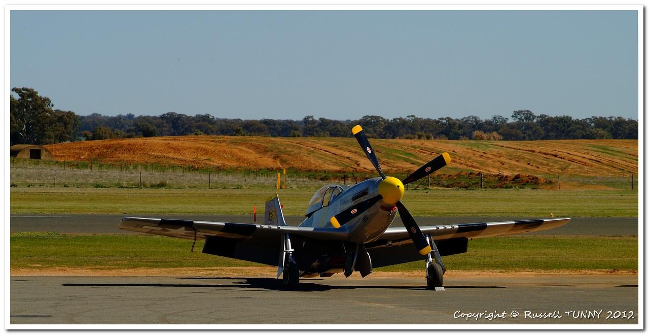 P51D Mustang