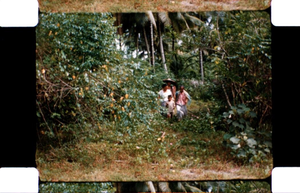 16mm_fw4e1264_013762.jpg