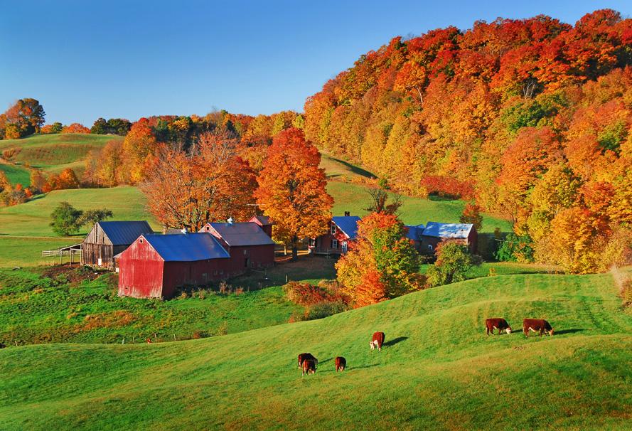 61 Jenne Farm Vermont.jpg
