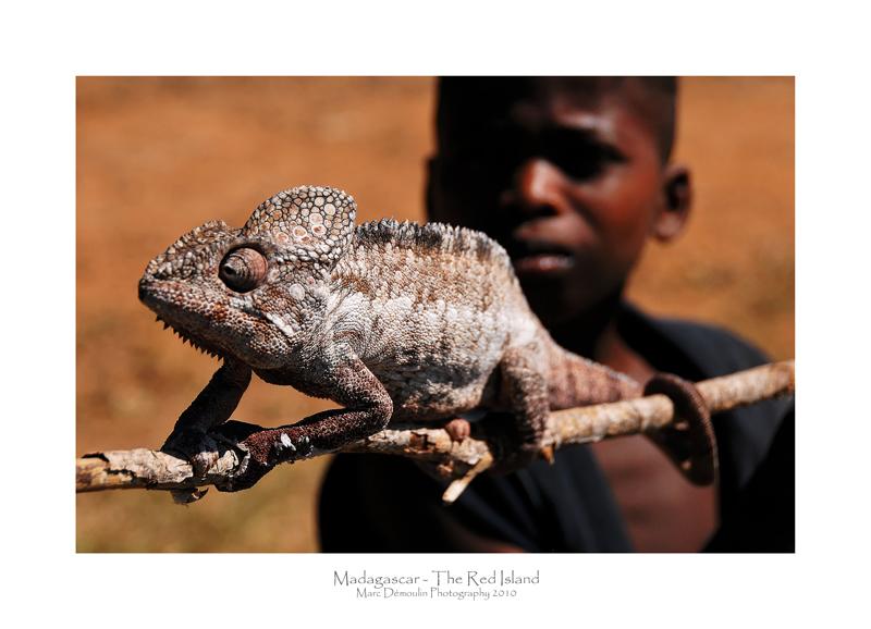 Madagascar - The Red Island 192