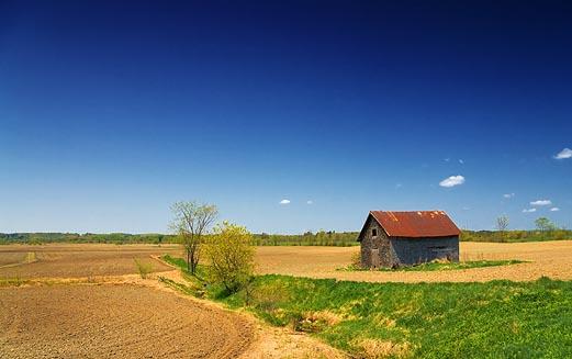 Old Barn In A Field 48462