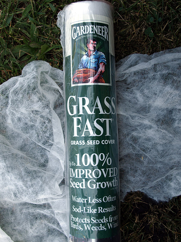 Starting A Lawn From Scratch Gardening